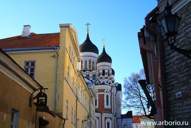 Таллин - виды и люди - фото