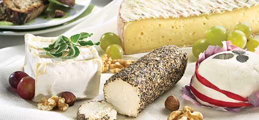 Сырная тарелка - инструкция по сборке - фото