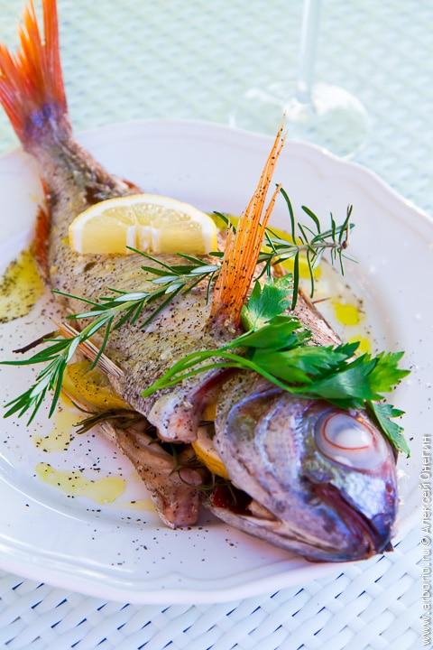 самые лучшие в рунете рецепты блюда из рыбы