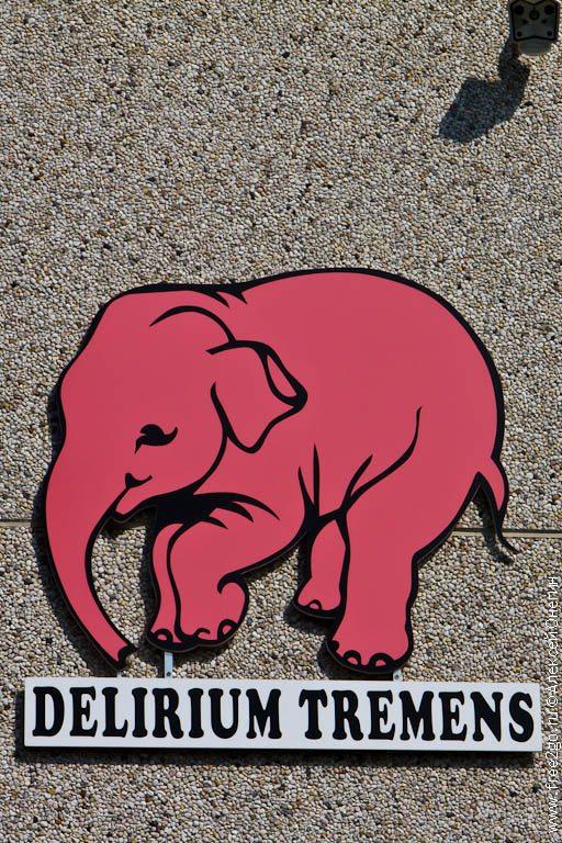 О слонах, вишнях и пивоварнях - Бельгия. фото