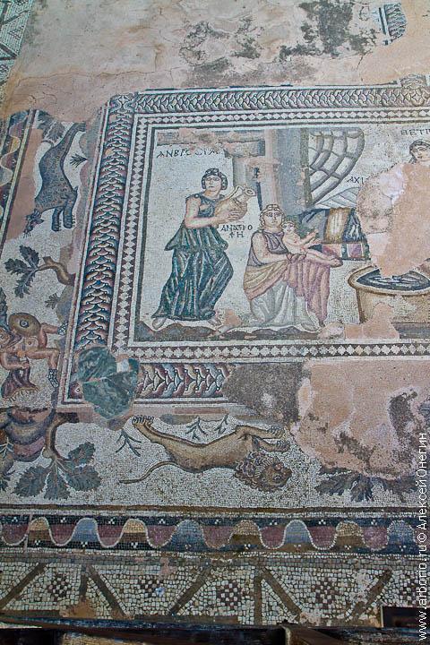 Мозаики Пафоса - Пафос, Кипр фото
