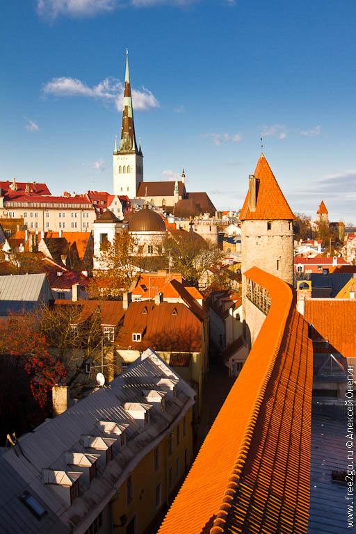Крыши Таллина - Эстония. фото