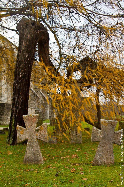 Монастырь святой Биргитты - Таллин, Эстония. фото