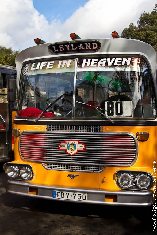Мальтийские автобусы: форсаж, винтаж, эпатаж фото