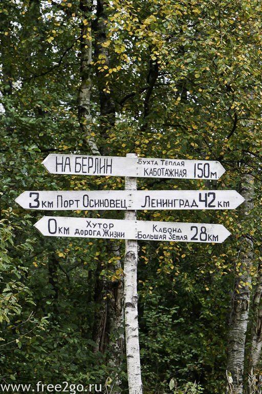 Страусиная ферма и Ладожское озеро - Ленинградская область. фото