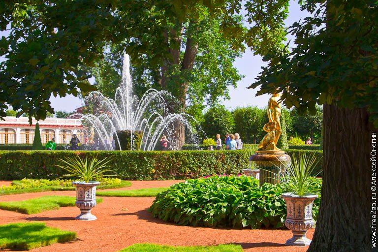 Белки, грибы и фонтаны - Петергоф. фото