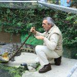 Укротитель крокодилов — Торремолинос, Андалусия, Испания.