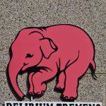 О слонах, вишнях и пивоварнях — Бельгия.