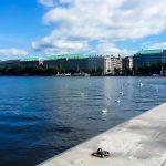 Вода, еда и еще несколько наблюдений из Гамбурга