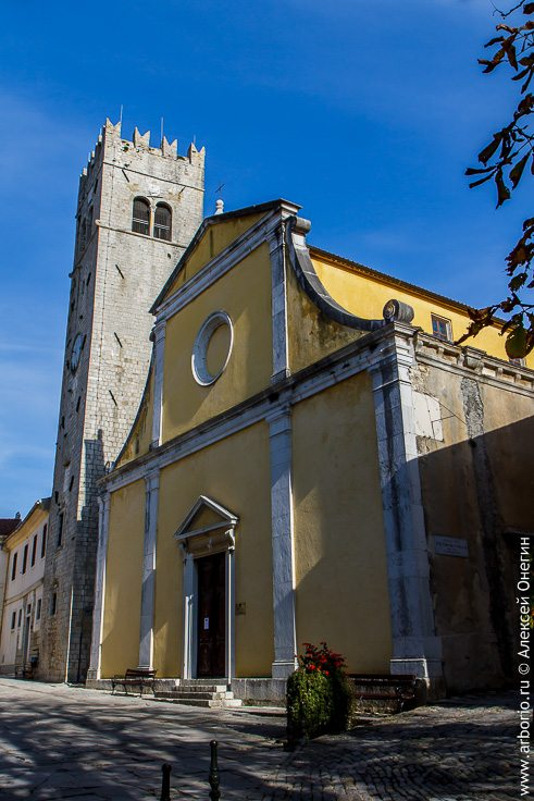 Трюфельная столица Истрии фото