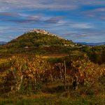 Трюфельная столица Истрии
