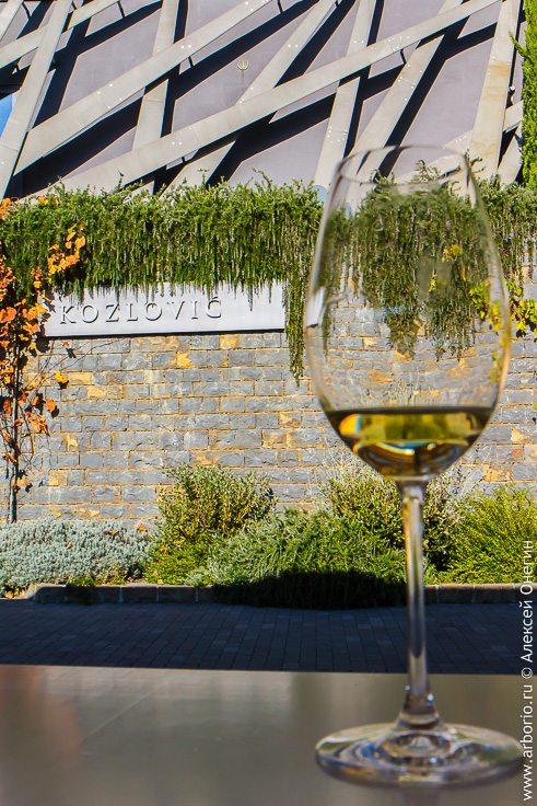 Вино и винодельни в Хорватии фото