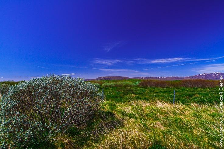 Исландия, Долина гейзеров