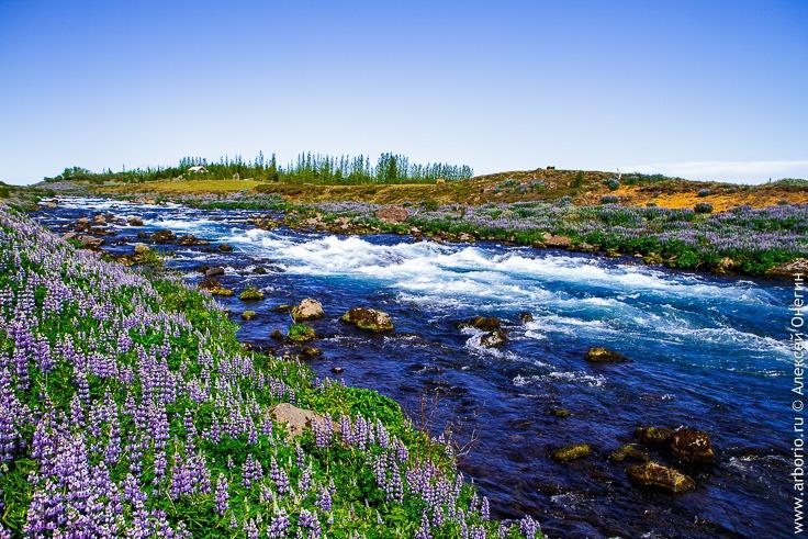 Водопад Гюдльфосс, Исландия