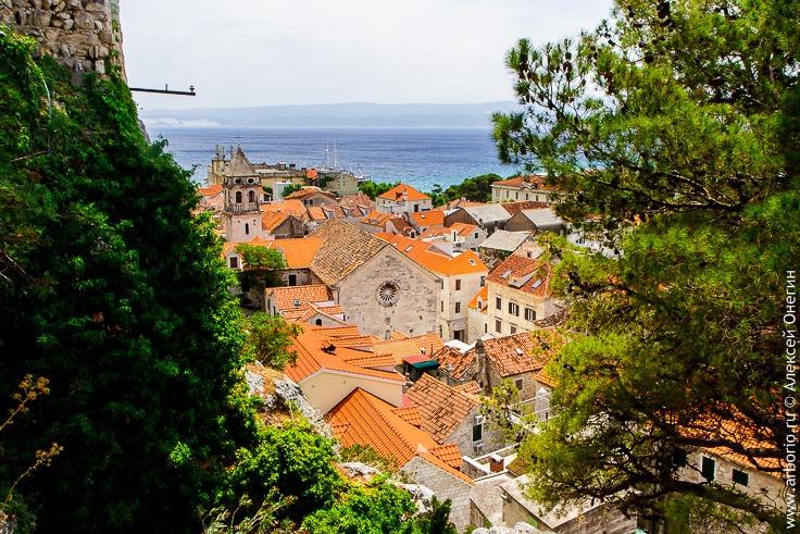 Хорватская Тортуга фото