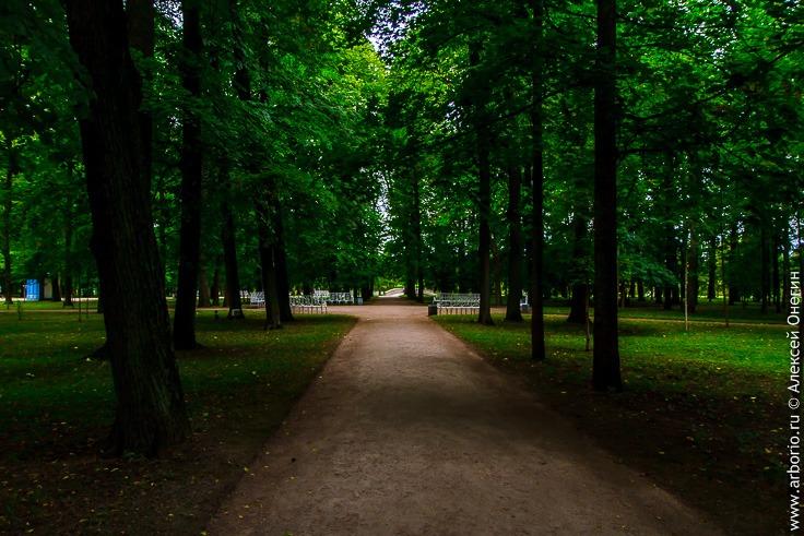 Екатерининский парк в Пушкине фото