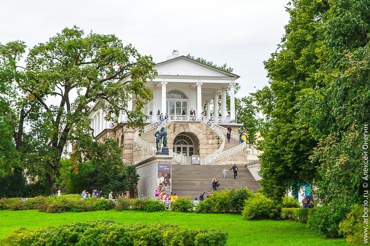 Екатерининский парк в городе Пушкин