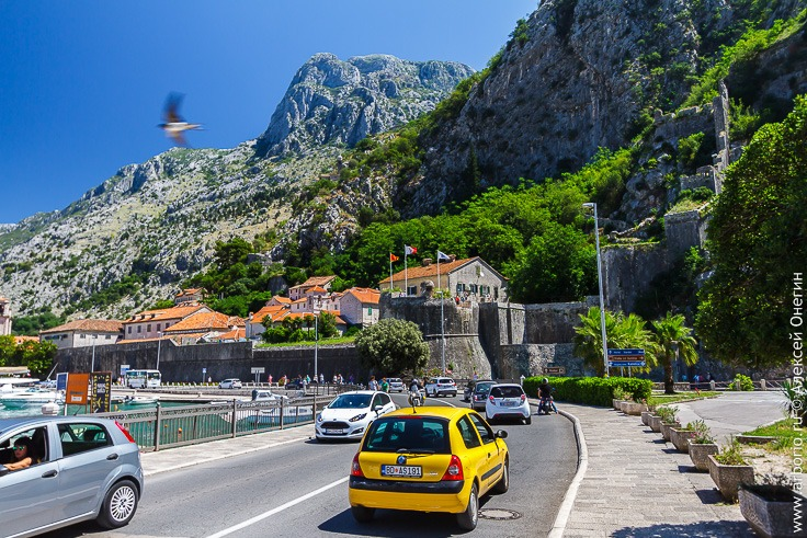 Хорватия или Черногория: какую страну выбрать для отпуска?