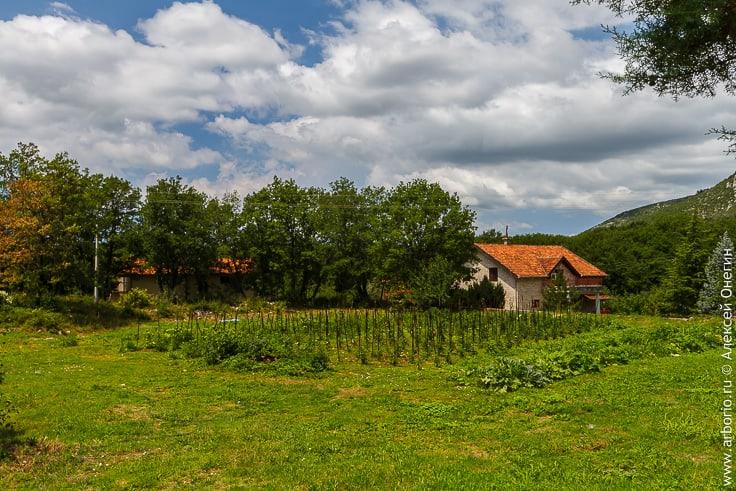 Монастырь Тврдош, Босния фото