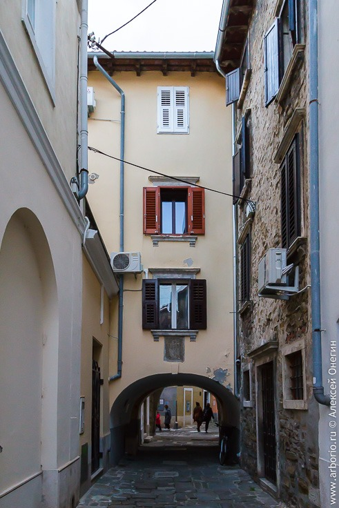 Словенская Истрия, часть вторая: Пиран фото