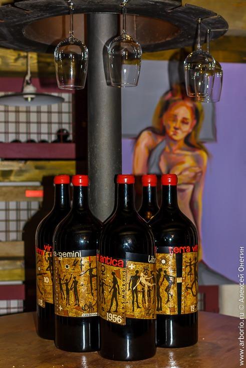 Горишка Брда: симбиоз вина и искусства фото