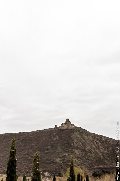 Монастырь Джвари, Мцхета и Шато Мухрани: куда съездить из Тбилиси фото
