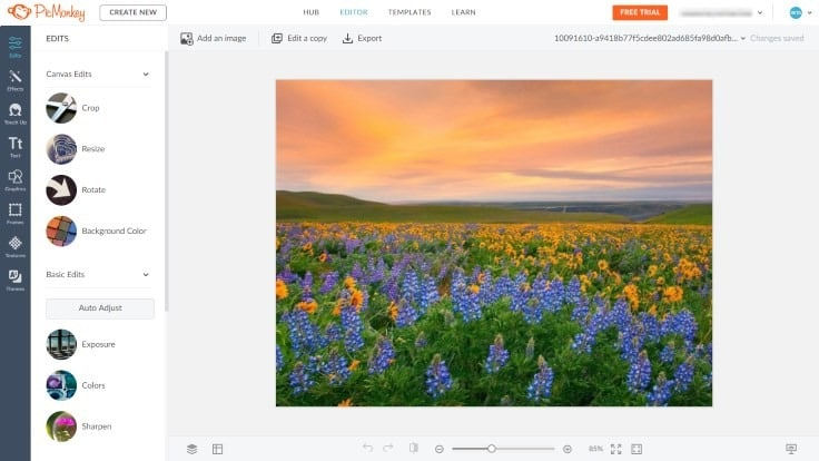 10 лучших сервисов для обработки фото онлайн фото