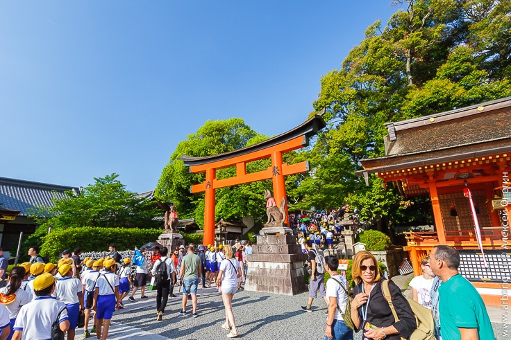 Все достопримечательности Киото: замок Нидзё и храм Фусими Инари фото