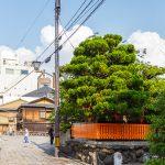 Все достопримечательности Киото: Гион и Сад камней Рёан-дзи