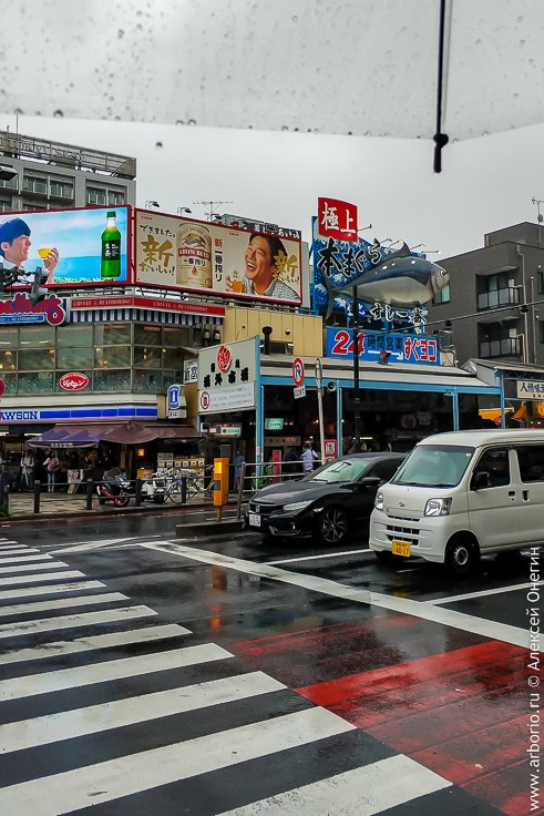 Токио, Япония - еда и достопримечательности