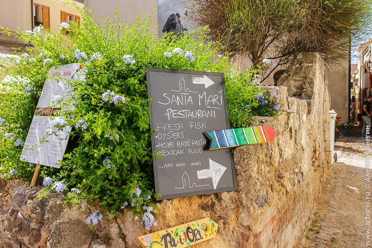 Сардиния: в поисках самой вкусной еды