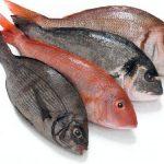 Как научиться готовить рыбу так, чтобы не было стыдно
