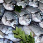 Пара слов о свежей рыбе.