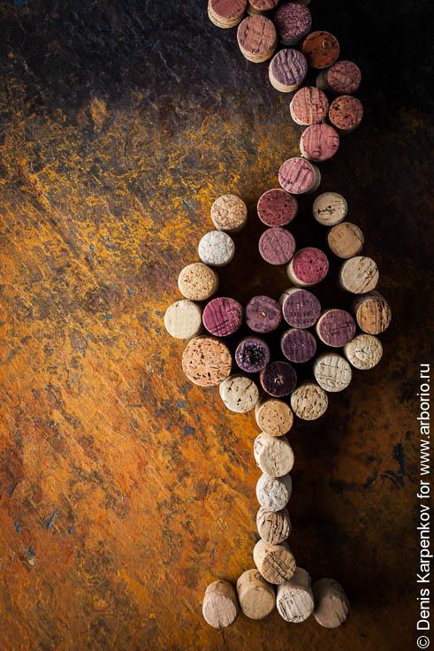 Виды вина: как не опозориться и сойти за эксперта - фото
