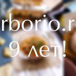 arborio.ru: лучшее за 9 лет