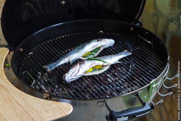 Рецепт приготовления сибаса на гриле с фото