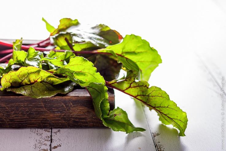 Рецепт вкусного гарнира из отваренной свекольной ботвы