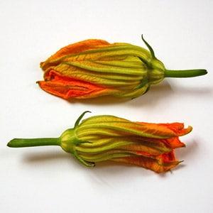 zucchini flowers Цветы в кулинарии